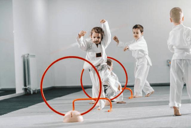 Kidsbirthday, Karate International Of Apex/Cary NC