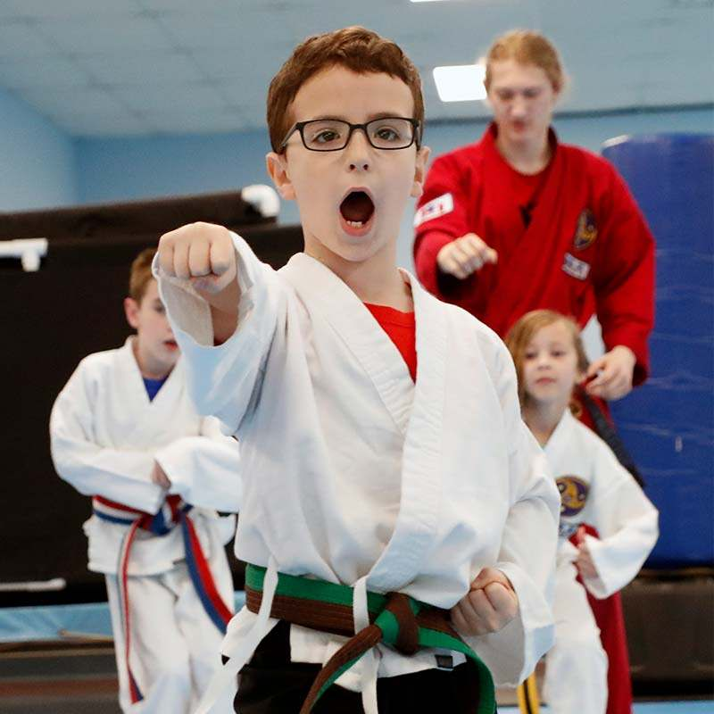kids martial arts classes in apex